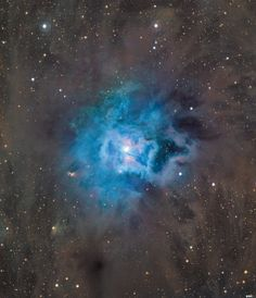 Iris, the Stars Are Bright Pin It Credit: Canada-France-Hawaii Telescope/Coelum 11/3/14: The Iris Nebula, NGC 7023, lies 1,300 light-years away in the constellation Cepheus.