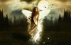 http://img.xcitefun.net/users/2009/07/100848,xcitefun-photo-manipulation-rise-on-an-angel-v3.jpg