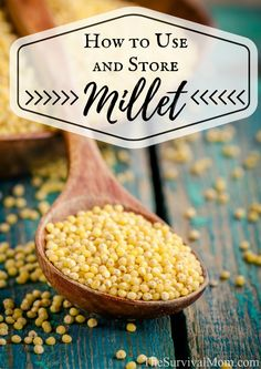 Millet is an ancient grain that is highly nutritious, easy to store, and versatile. Learn more about how to use millet in this article.