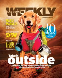 Gear to outfit your #dog with for your next #hiking adventure (and dog-friendly hikes!).