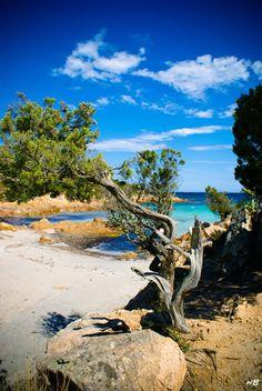 #Landscape - Sardegna