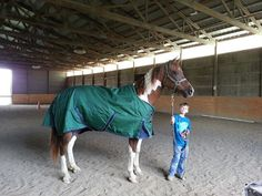"April Storm ""Stormy"" is sporting her new blanket that was donated by WeatherBeeta North America ♥ A Home For Every Horse"