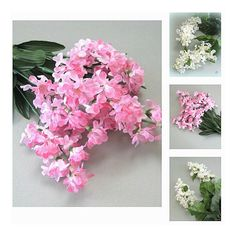 Artificial Silk Flower Supply Pink Flower Decor White Flower Stem... ($11) ❤ liked on Polyvore featuring home, home decor and floral decor