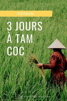 Vols pas chers vers Vietnam. Delta Du Mekong, Vietnam Voyage, Les Continents, Le Havre, Short Trip, Asia Travel, Travel Tips, Day Trip, Cambodia