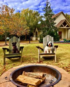 Barnsley Resort sit back with a glass of wine or a roasted s'more by the fire. Barnsley, Sit Back, Four Legged, Weekend Getaways, Your Dog, Georgia, Pup, Places To Visit, Coast