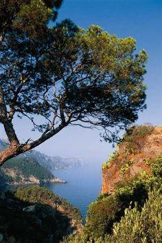 Cala Banyalbufar beach in Mallorca
