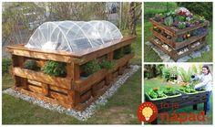 Vyradené palety môžete skvele využiť v záhrade. napríklad na pestovanie zeleniny či obľúbených kvetov. Inšpirujte sa, vyzerá to úžasne. Outdoor Furniture Sets, Outdoor Decor, Sweet Home, Gardening, Creative, Home Decor, Google, Homemade Home Decor, House Beautiful