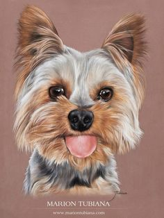 "Determine additional info on ""yorkshire terrier puppies"". Visit our site. Animal Paintings, Animal Drawings, Art Drawings, Chien Yorkshire Terrier, Frida Art, Yorkie Dogs, Yorkies, Wow Art, Dog Portraits"