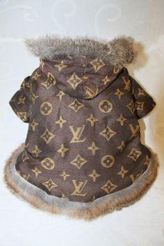 Winter Fashion Designer Pet Dog Coat Jacket Clothes Brown D 106 | eBay