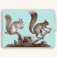 Simply Nuts About You! Valentine's Day Card #cards #squirrels #animals #illustrations
