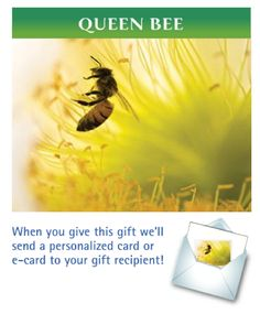 Day 6: Create a buzz with our Queen Bee Green Gift. Bees have it tough enough in the winter, and pesticides are only making it worse --  but your gift will help our legal team protect them!  $35.00