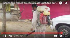 Suspenden clases en escuela de Juchitán por plaga de pulgas y garrapatas.