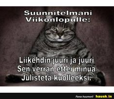 Animals And Pets, Haha, Humor, Memes, Funny, Pets, Ha Ha, Humour, Meme