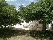 Great Farmhouse Barn for rent in Manta Rota Portugal 565.00 aan zee
