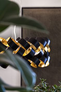 #ring by #brianrasmussen
