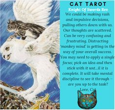 Monthly readings on my YouTube channel: www.youtube.com/c/cattarot Book your reading: www.cattarot.ca Love, Cat #tarot #tarotcards Monkey Mind, Tarot Cards, Channel, How To Apply, Reading, Cats, Youtube, Books, Fictional Characters
