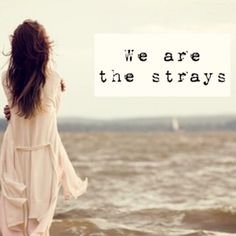The Strays- Sleeping With Sirens