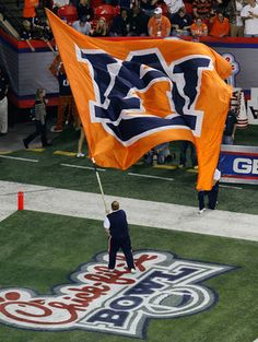 This is why we say WAR EAGLE!