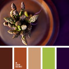 Dark chocolate, milk caramel, light beige, soft olive and deep purple creates a rich and pleasant for the perception of color. Note greenery refreshes the entire composition. Suitable for decoration of interiors with mental unobtrusive smooth transition of colors. Wardrobe, selected in this color palette will satisfy fans of low-key style and elegance.