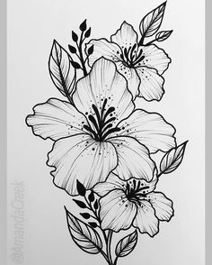Floral flower drawing black and white illustration line flowers mightylinksfo