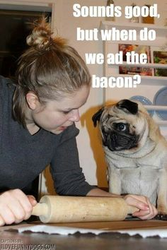 I love that Pug! :) @Jacqueline Somers Dager