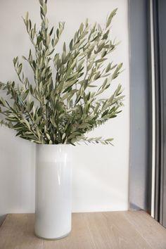 Olive Branches in White Vase at Souvla Greek Restaurant in Hayes Valley, San Francisco, Remodelista