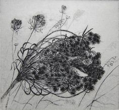 etching by fox nest