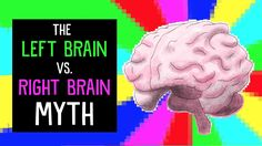 View full lesson: https://ed.ted.com/lessons/the-left-brain-vs-right-brain-myth-elizabeth-waters The human brain is visibly split into a left and right side....