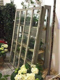 Garten und Terrasse Mini greenhouse The Secret Of Ladies.
