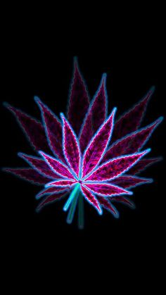 My Photoshop cannabis leaf art Cannabis Wallpaper, Weed Wallpaper, Aesthetic Iphone Wallpaper, Wallpaper Art, Fractal Art, Fractals, Weed Backgrounds, Rauch Fotografie, Weed Pictures