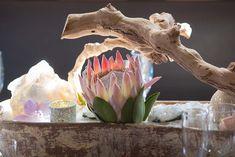 Protea centerpiece,