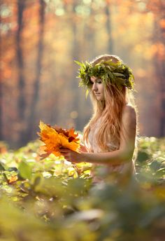 Gathering of autumnal leaves