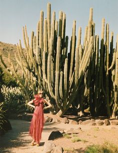 We Just Like it >> Red dress and cactus