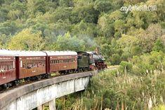 Uma volta no trem Maria Fumaça em Bento Gonçalves