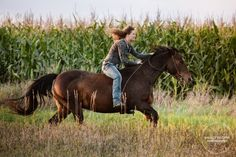 Horse photos, horse senior pictures, pictures with horses, country Horse Senior Pictures, Pictures With Horses, Horse Photos, Senior Photos, Senior Portraits, Senior Posing, Senior Session, Horse Girl Photography, Equine Photography