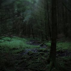 Old issues resolved into night (somewhere very near) by Coyhand, via Flickr