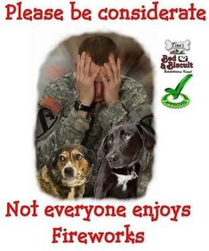 Please be considerate. Not everyone enjoys fireworks especially for veterans with PTSD & pets. Also watch out for the potential for starting a wildfire. Fireworks Quotes, Ptsd Quotes, Dog Quotes, Summer Safety, Therapy Quotes, 4th Of July Fireworks, July 4th, Let Freedom Ring, Support Our Troops