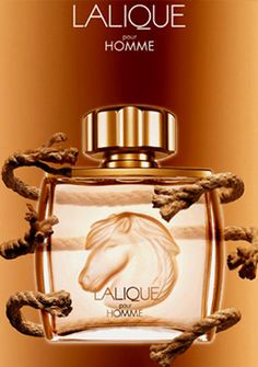 Lalique Equus - it took a long time for me to finally get this smell Perfume And Cologne, Best Perfume, Perfume Bottles, Men's Cologne, Lalique Perfume, Men's Grooming, Smell Good, Aftershave, Mens Fashion
