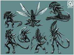 Aliens: Colonial Marines: Early Xenomorph Variant Concepts by Lord_Sharpie Alien Vs Predator, Predator Movie, Predator Alien, Predator Arnold, Xenomorph, Alien Creatures, Fantasy Creatures, Art Alien, Aliens Colonial Marines