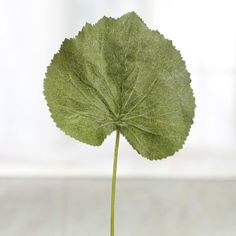 $0.99 Artificial Grape Leaf Pick (can be painted in gold and becomes a framed art)