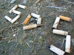 vida eco organica   Vida Eco Organica (eco life): cigarrillos que contaminas