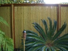 Cheap Fence Ideas | Bamboo fence design ideas | Interior and Exterior Design Bamboo Privacy Fence, Garden Privacy, Fence Design, Garden Design, Exterior Design, Interior And Exterior, Bungalow, Vinyl Picket Fence, Construction