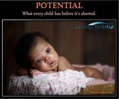 Choose Life. Colorado Campaign for Life.