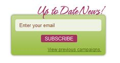 Newsletter Subscribe Box by DSWP Website Services
