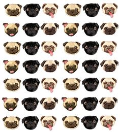 pugs love them Pug Wallpaper, Pattern Wallpaper, Kawaii, Pugs And Kisses, Baby Pugs, Tumblr Backgrounds, Cute Pugs, Pug Love, Cute Pattern
