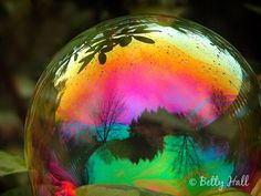 Magic Bubble photo by Betty Hall