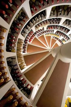 interesting way to store wine beneath the house-- along a sprial staircase storage unit