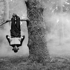 Hanging upside down on a tree branch and reading....?  I wonder how long that could last.