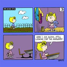 """""""Here I am again..still looking for the answers!"""", Sally Brown."""