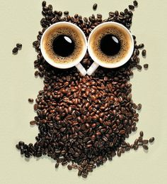 an owl...with coffee...amazing